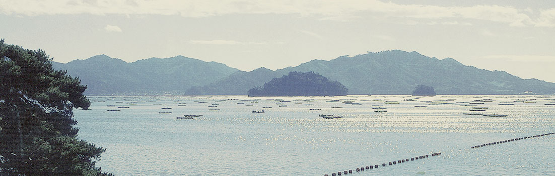 Het Holland Eiland in de baai van Yamada